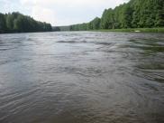Rėvos, vadinamos kriokuvomis. Pirmosios yra dar ramios, upė vis dar pakilusi